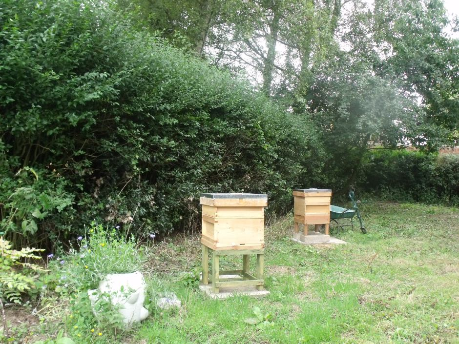 Improved apiary