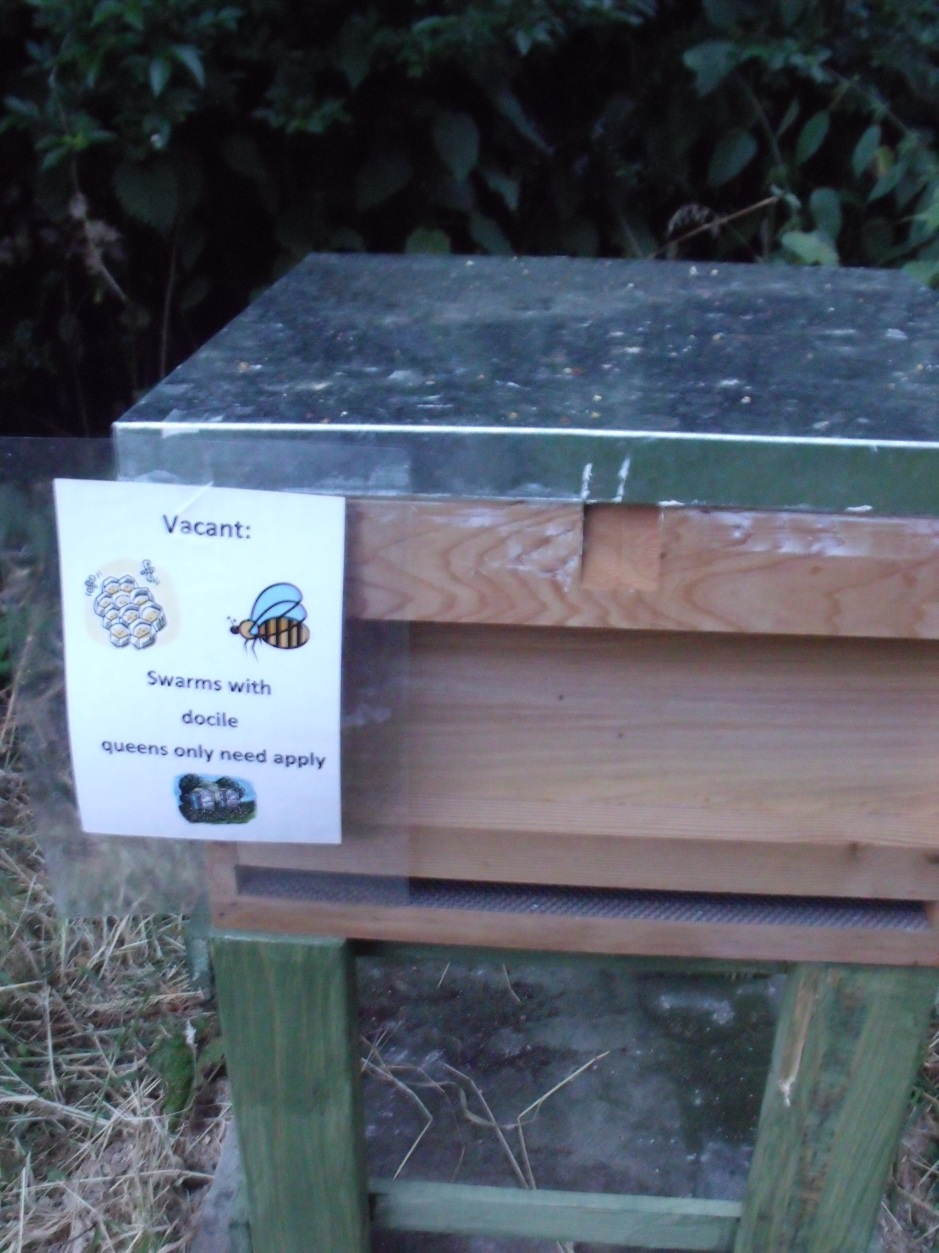 New hive with notice 'vacant possession' docile bees only