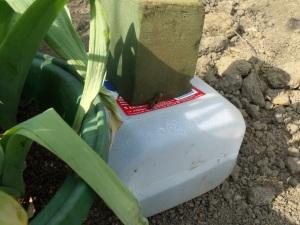 Ingenious water reservoir/feeder
