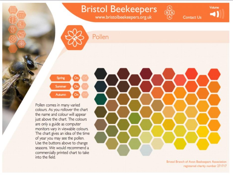 Bristol beekeepers excellent pollen chart