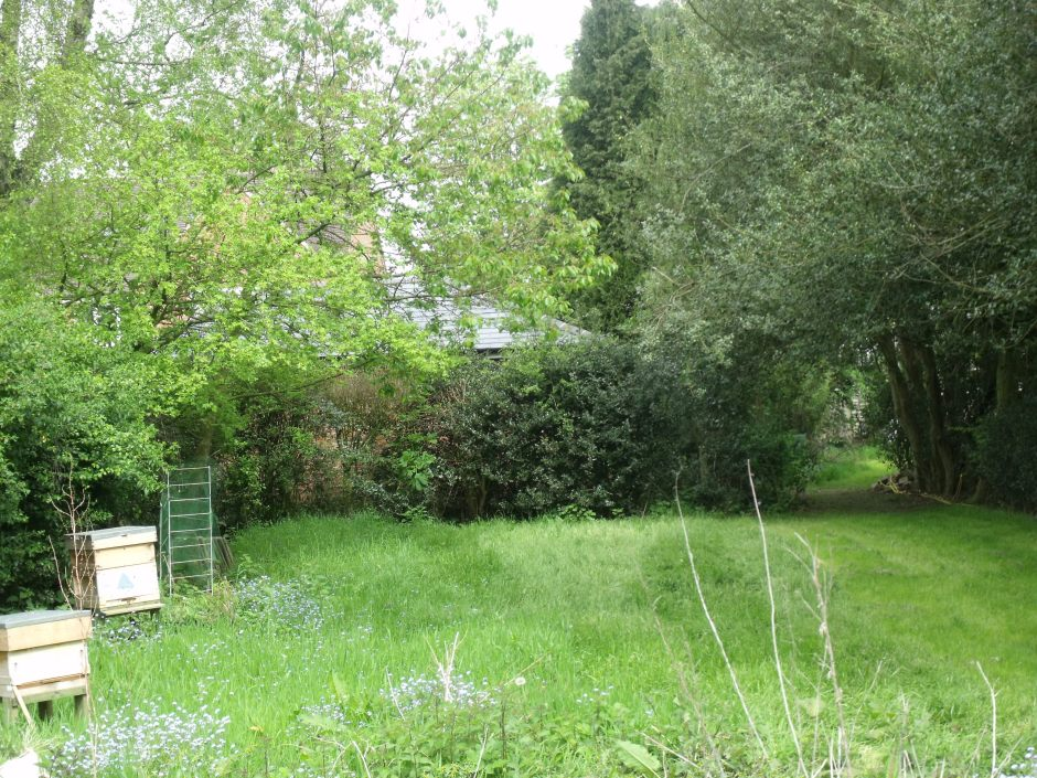 Apiary viewed from open southern end